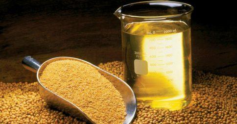 olio-soia-1